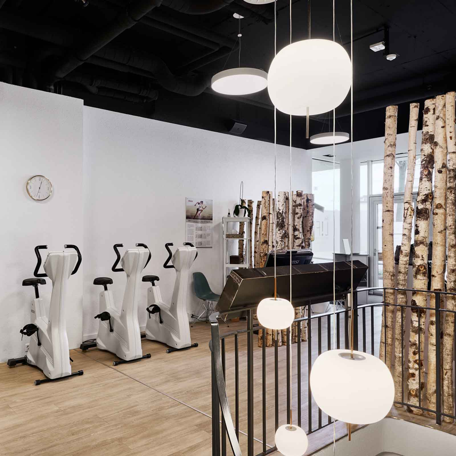 Lady Fitness Basel Fitnessgeräte
