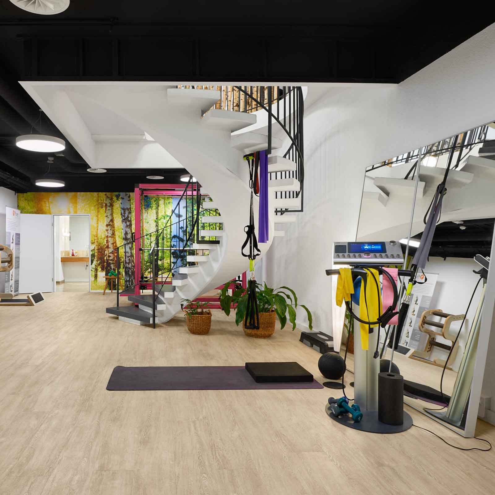 Lady Fitness Basel Trainingsbereich